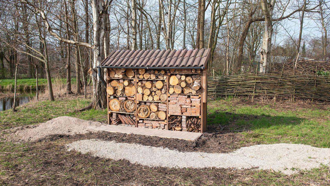 Insectenhotel geopend in De Heemtuin